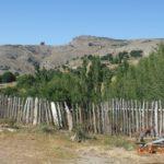 2010 Koman Köyümüzün Resimleri