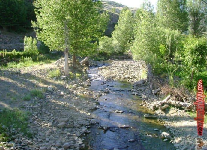 Alucra Koman Köyü Resimleri 2008